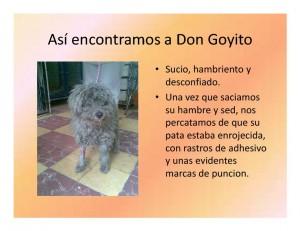 goyo-0