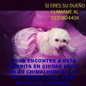 320166_3136507191961_1933268436_n